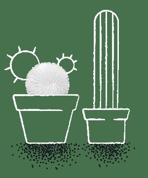 Plant_Sheep-1